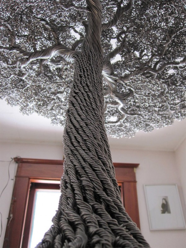 unusual_trees_20.jpg