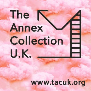 Премия Annex Collection Acquisition Award